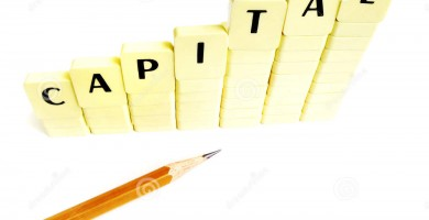 http://www.dreamstime.com/royalty-free-stock-image-capital-increase-concept-image6482056